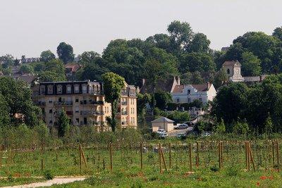 image de couverture de Saintry-sur-Seine