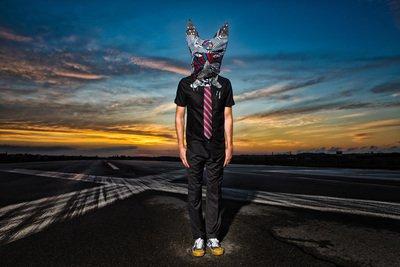 image de couverture de GENERAL ELEKTRIKS