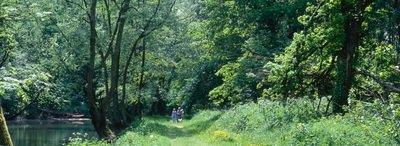 image de couverture de Forêt domaniale de Sénart
