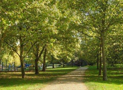 image de couverture de Parc des Loges