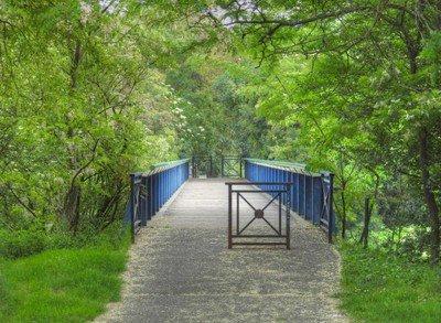 image de couverture de Parc Henri Fabre