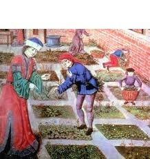 image de couverture de Plantes et jardins au Moyen-Age