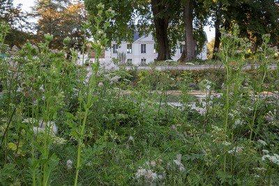 image de couverture de Jardiniers en herbe