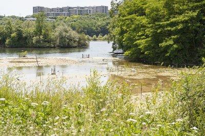 lacs-de-grigny-l-enclave-verte-image-6