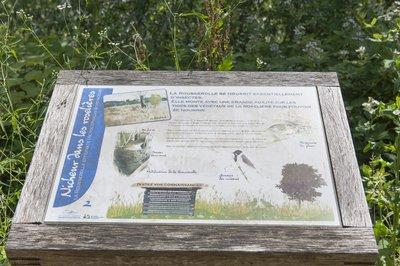 lacs-de-grigny-l-enclave-verte-image-10