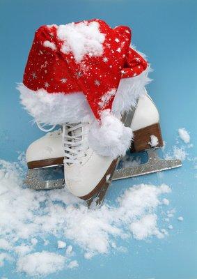 image de couverture de Jardin des Neiges spécial Noël