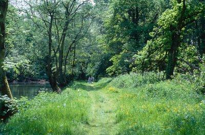 image de couverture de Sorties découvertes : Comment est gérée la forêt de Sénart ?