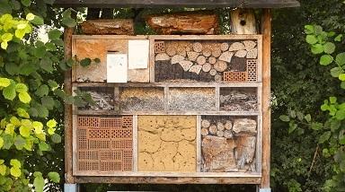 image de couverture de Ateliers Biodiversité