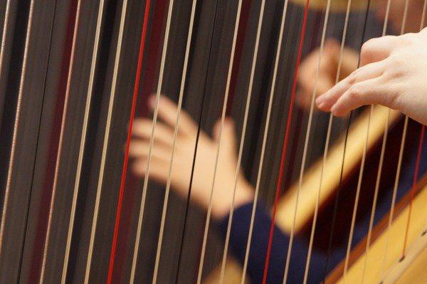 image de couverture de Fête de la musique