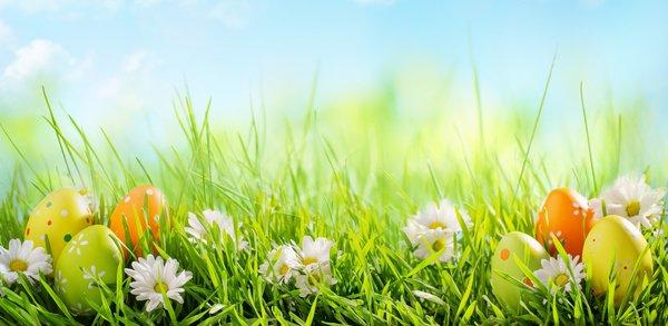 image de couverture de Les chasses aux oeufs de Pâques près de chez vous !