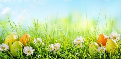 image de couverture de Chasse aux oeufs de Pâques à Nandy