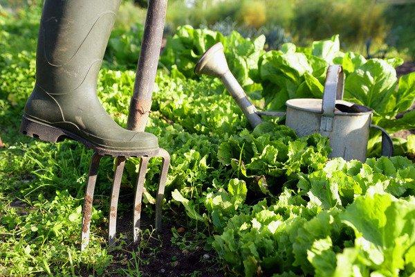 image de couverture de Journée départementale des Espaces Naturels Sensibles