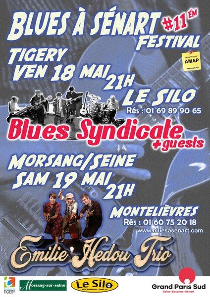 image de couverture de Blues syndicate : Festival Blues à Sénart