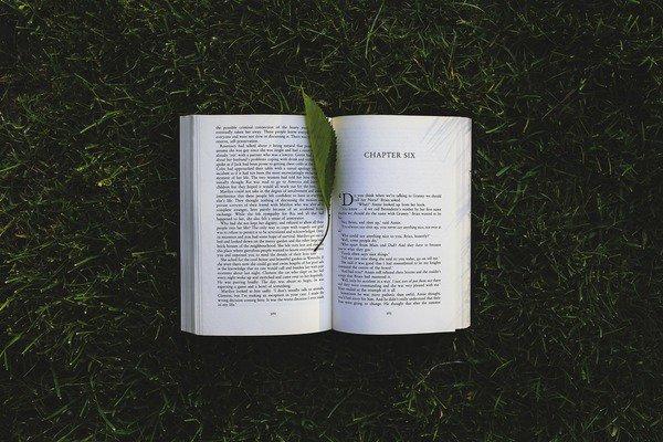 book-791765_1920.jpg