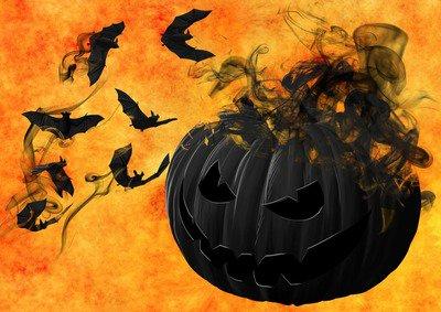 pumpkin-988231_1920.jpg