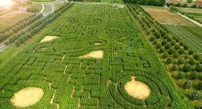 labyrinthe3.jpg