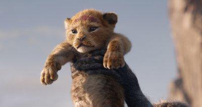 Le Roi Lion image.jpg