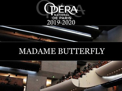 Madame butterfly bandeau.jpg