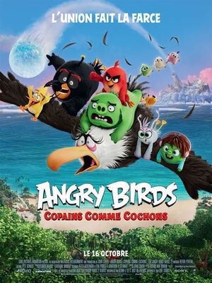 Angry birds affiche.jpg