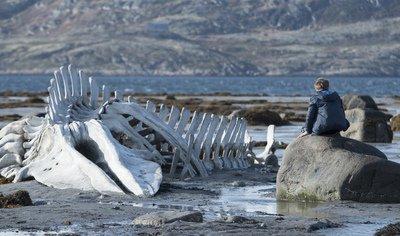Leviathan image.jpg