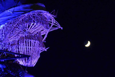 la tête dans les étoiles - crédit Michel WIART.jpg