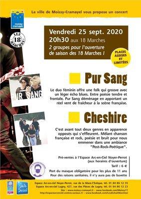 Affiche concert -page-001.jpg