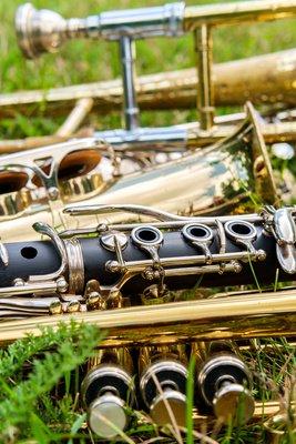 instruments herbe.jpeg