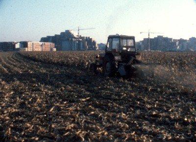 tracteur champs.jpg