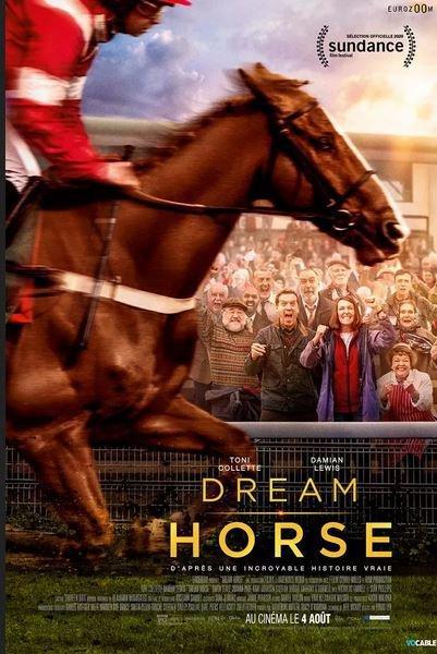 dream horse affiche.JPG