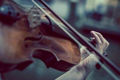 violin-gcacb911a7_640.jpg